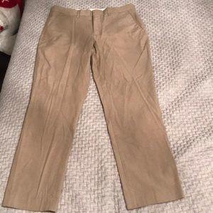 Express Photographer Collection Dress Pants